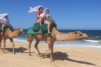 050719_TSA_Camel Walk