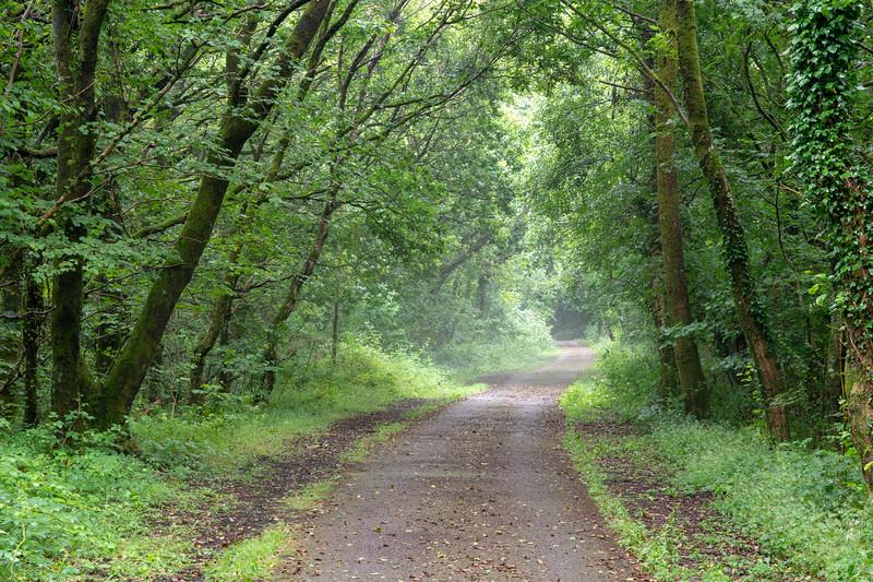 Taff Trail at Nantgarw