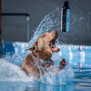 Splash 7