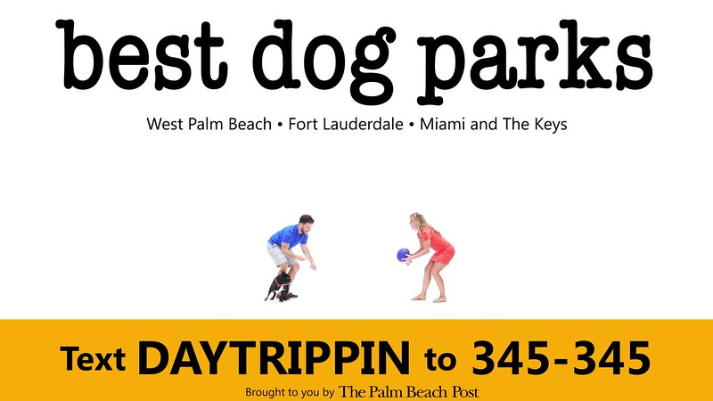 _DAY TRIPPIN - NEW COMMERCIAL 2 best dog parks GIF_PBP.mp4