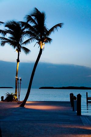 Florida - Nature Images