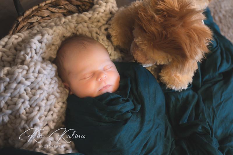 Elijah & Lion-.jpg