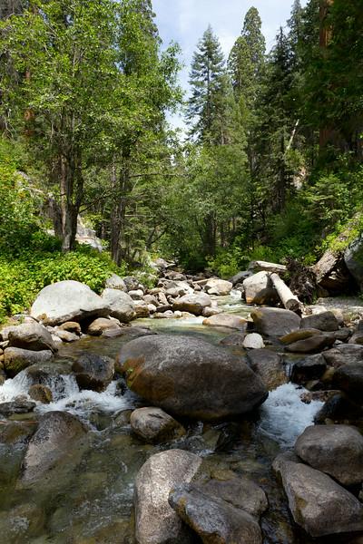 Sequoia_0567.jpg