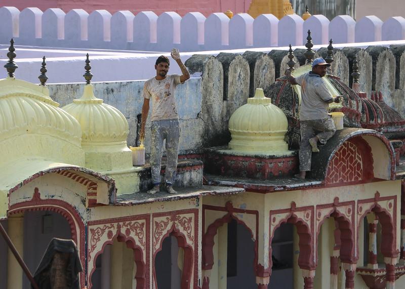 India-Pushkar-2019-8763.jpg