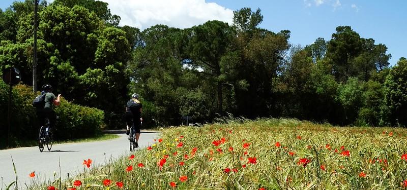 cycle-tour-girona-22.jpg