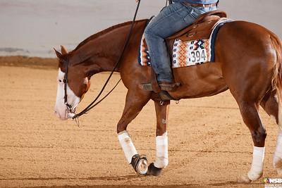 Wednesday Novice Horse Set 14 104-111