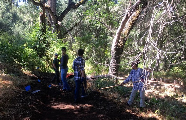 Vineyard Elementary School Trail Restoration and Improvement Project