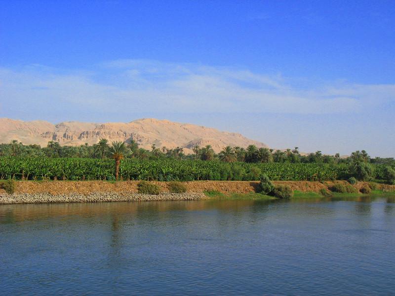 Egypt-435.jpg