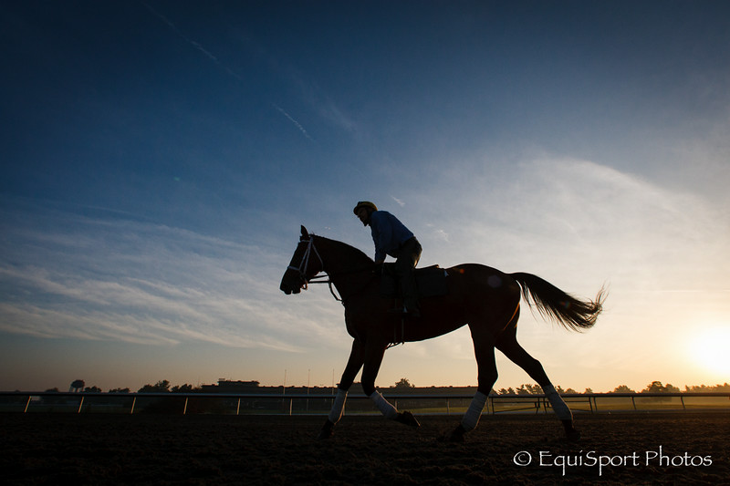 A horse gallops on the main track Keeneland 9.30.2012