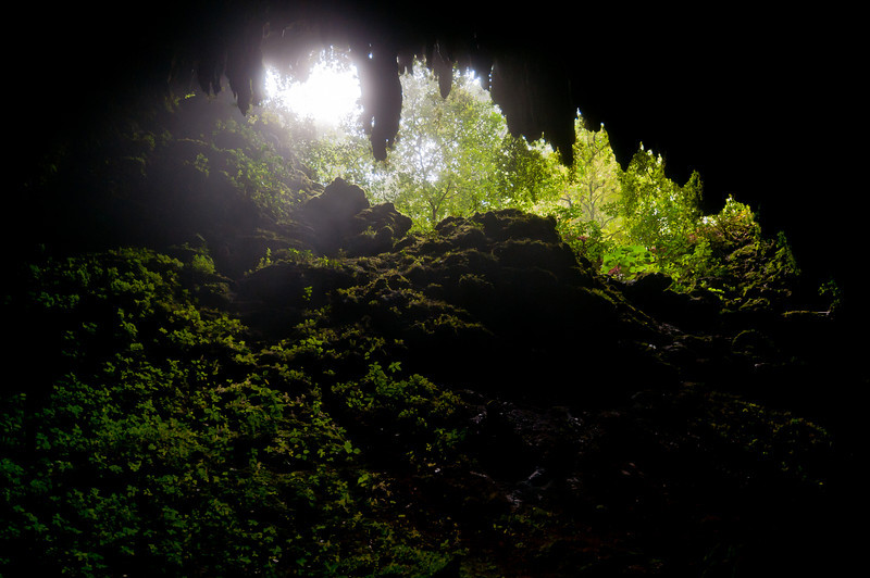Entrance to Camuy Cave as seen from inside - Puerto Rico