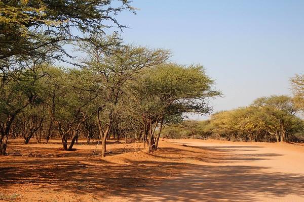 2016 - Botswana - Gaborone - Game Reserve