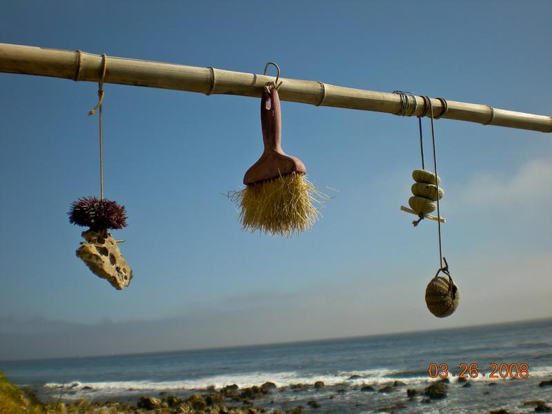 Strange beach voodoo artifacts.