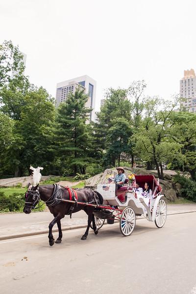 Central Park Wedding - Ronica & Hannah-17.jpg