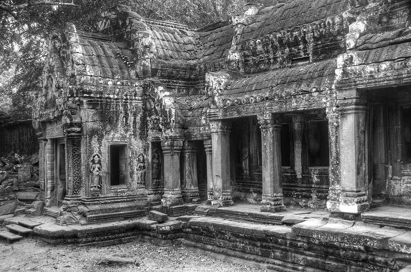Ta Prohm - Angkor Archaeological Park