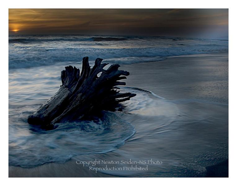 Driftwood Sunset Moss Landing, California