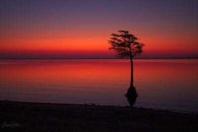 Lewisville Sunrise
