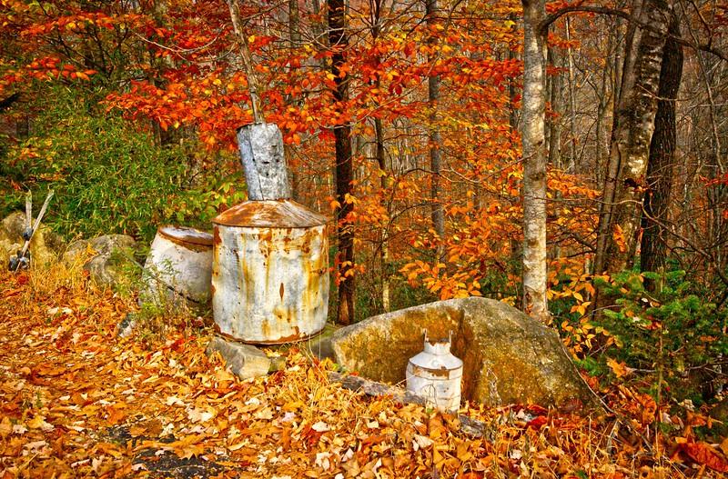 Rusty Still Road.jpg