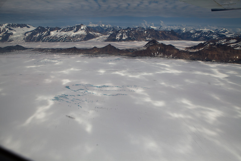 Alaska Icy Bay-3499.jpg