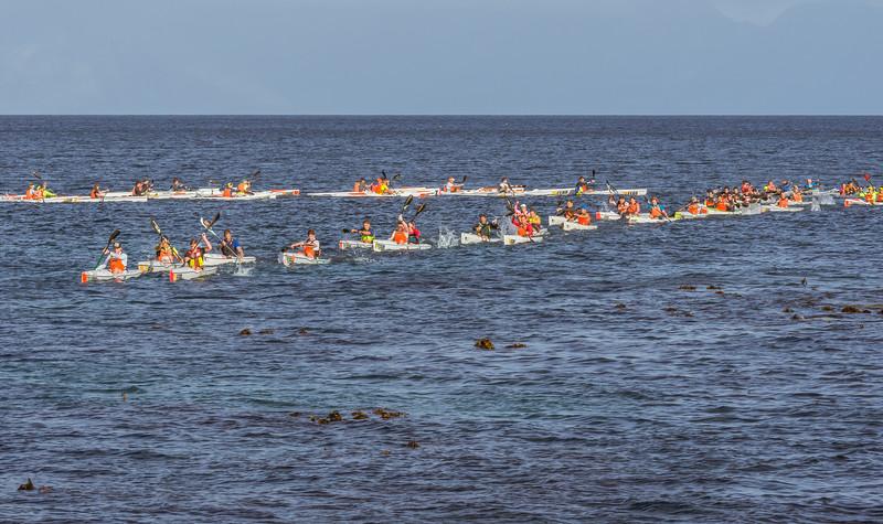 SeadogRace 2018 edited-1195.jpg