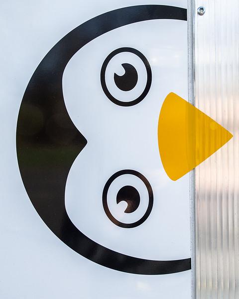 Datt_Penguin