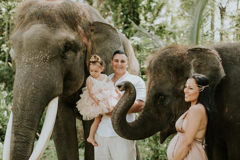 VTV_family_photoshoot_elephants_Bali_ (81).jpg