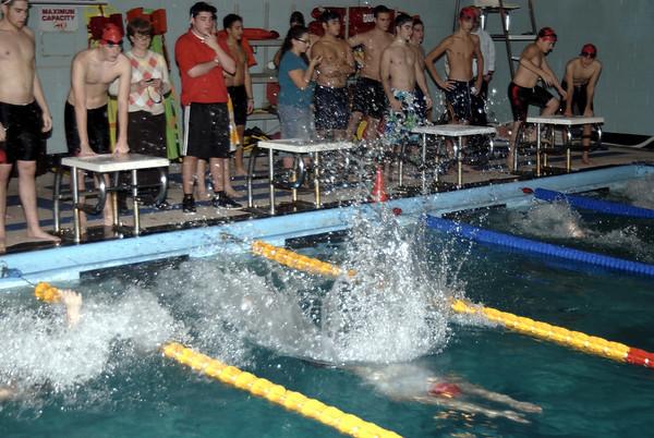 Frisch Swimming