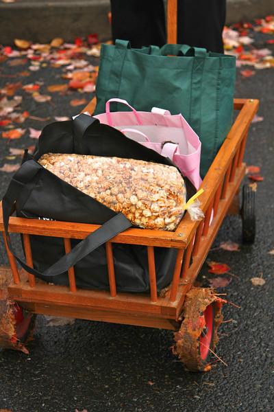 Beaverton Harvest Market 2011  3706.jpg