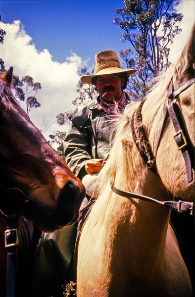 Shannon Horseback Adventures