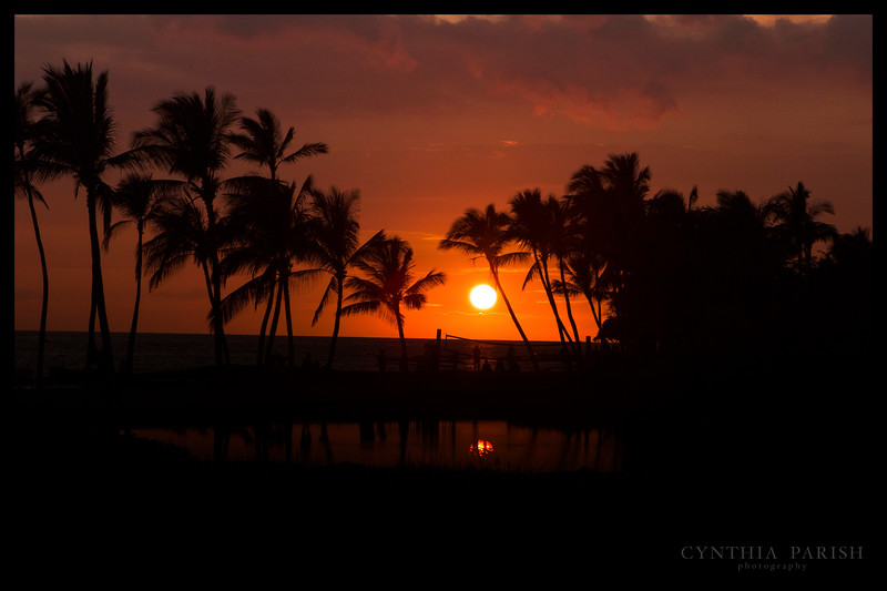 SunsetBeach_Hawaii_664A9983.jpg