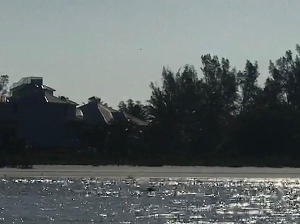 10/11/17 - Barrier Islands 8:30