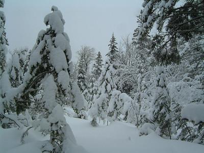 2008-02-06 Mont Saint-Anne (Michel Valin)