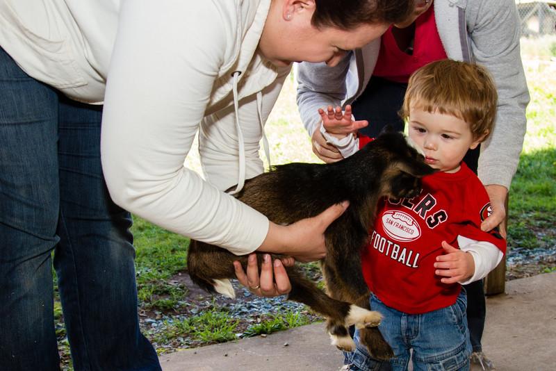 04-19 Preschool Animal Day-36.jpg