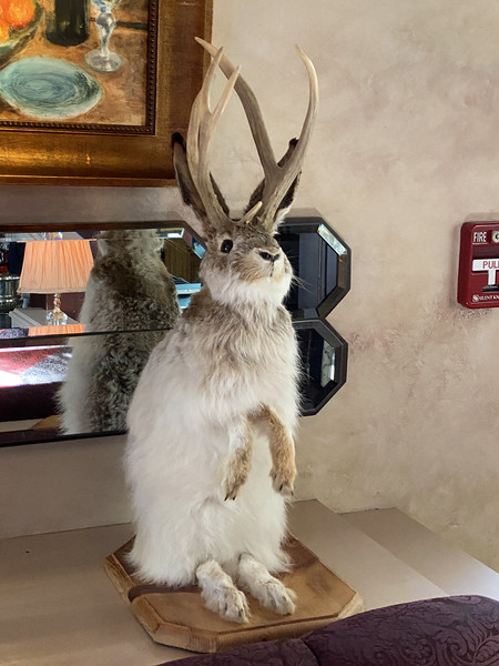 Jackelope, The Herbfarm's Official Mascot