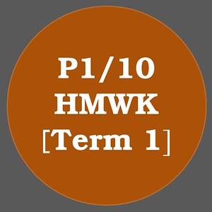 P1/10 HMWK T1