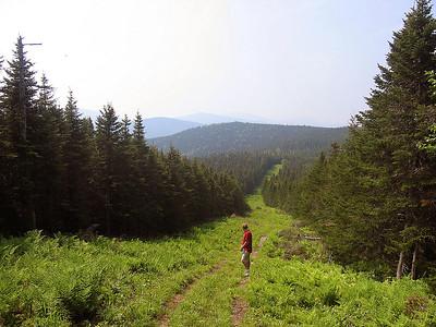 Boundary Peak bushwhack: June 18