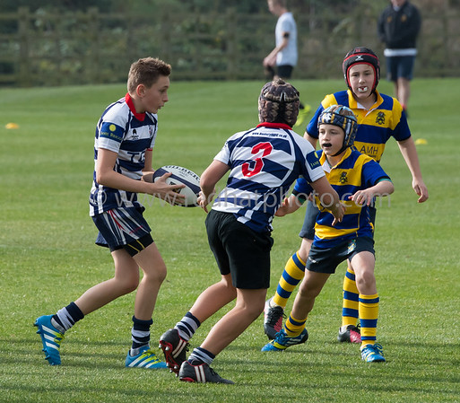 Under 13s, Franklin's Gardens, 15 October 2016