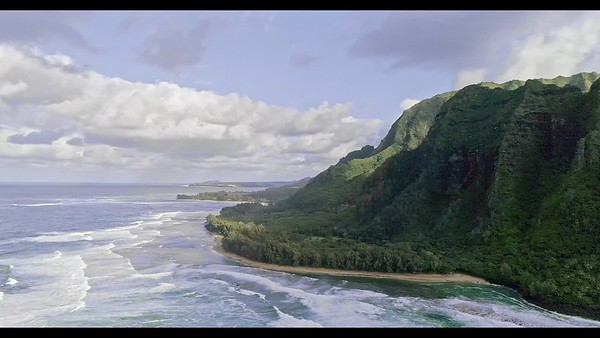 Kauai Coasts