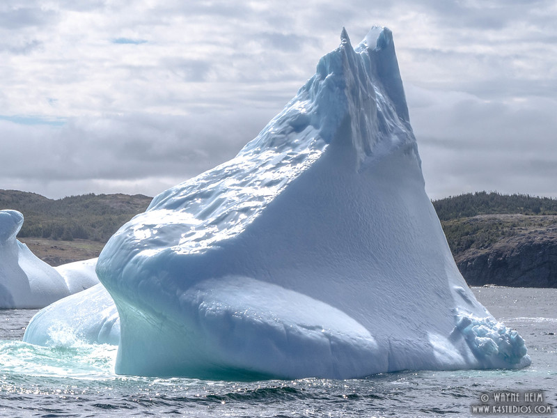 Iceberg 41   Photography by Wayne Heim
