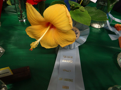 The 2014 Fort Lauderdale Garden Club Show