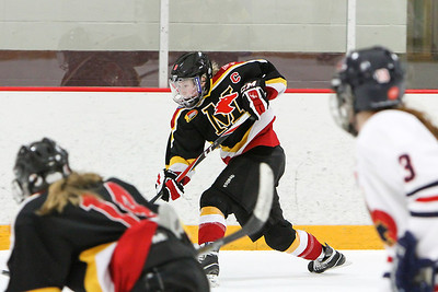 JWHL Minnesota Thoroughbreds