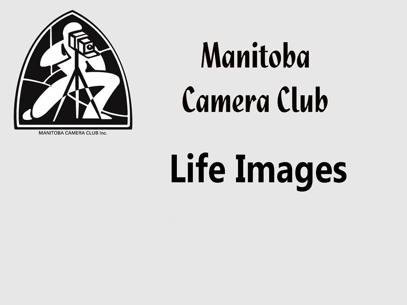 L0 0 01 Life Images.jpg