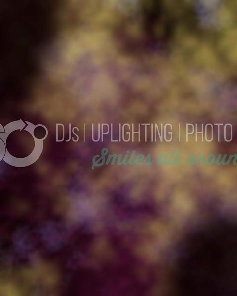 Tool Purple_batch_batch.jpg
