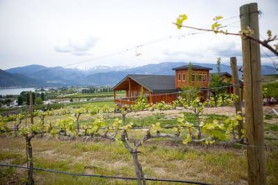 Vineyards/Wineries