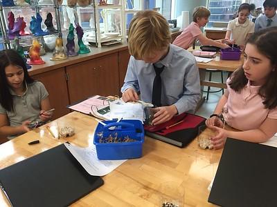 MMS Grade 5 Creating Terrariums