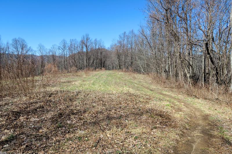 Bennett Gap Trail -- 3,570'