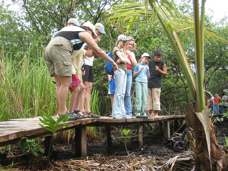 2006-02-21-0006-Thompson Family Adventures trip to Panama with Hahns-Day 4-Bocas del Toro, Salt Creek-ElaineH-Jeremy-Curtis-Audrey-Debby-Elaine.JPG