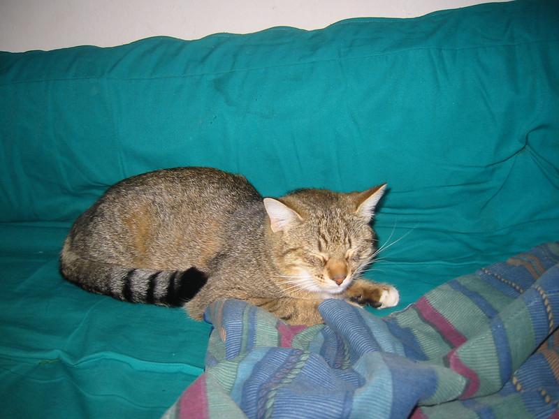 23Jan2005-09_16_21.jpg