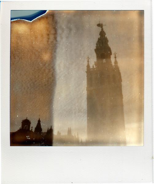 polaroid025.jpg