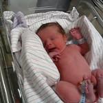 Newborn Quinn