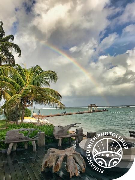 PhotoLemur Rainbow